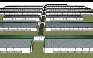 Nucleus Farms 650 sows