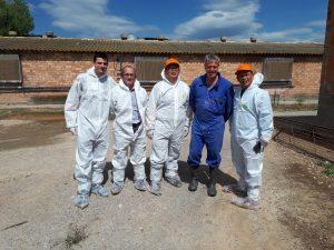 Visite élevage de porcs porcins en Espagne avec partenaires Philippins